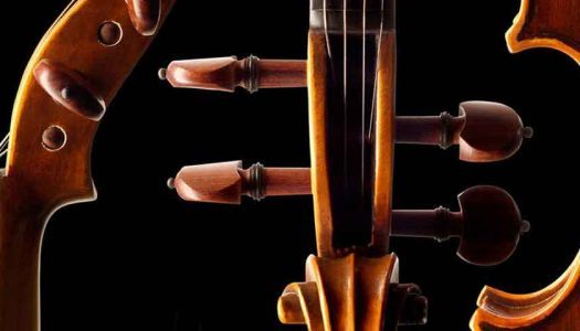 Violin Parts – A Guide for the Beginner Violin Player